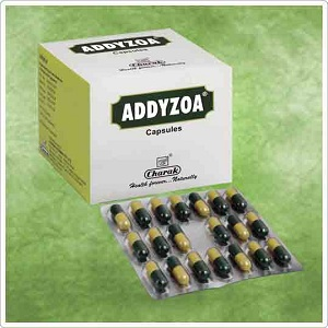 Addyzoa review