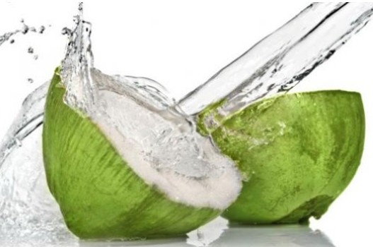 Coconut water ed