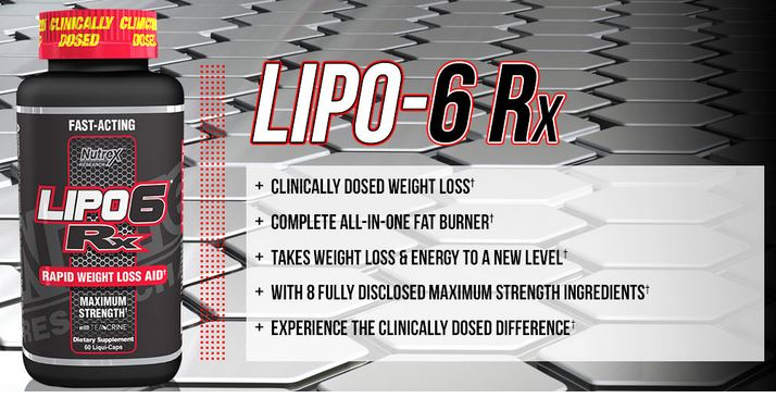 LIPO 6 Rx Overview