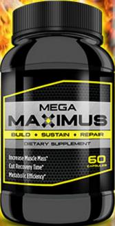 Mega maximus