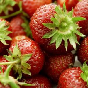strawberries-weight-loss